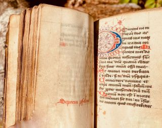 Image 7 of 11 for [Book of hours [manuscript] : use of Sarum]